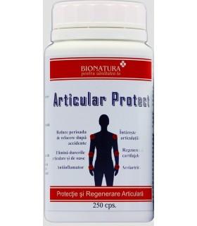 Articular Protect 2+1 Noni Gratuit- Site oficial Dr Catalin Luca