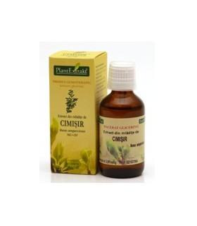 Extract din mlădițe de Cimișir - 50 ml
